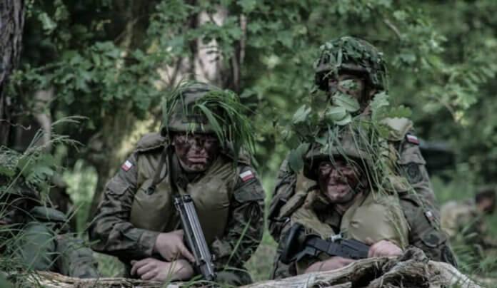 szkolenia Wojsk Obrony Terytorialnej